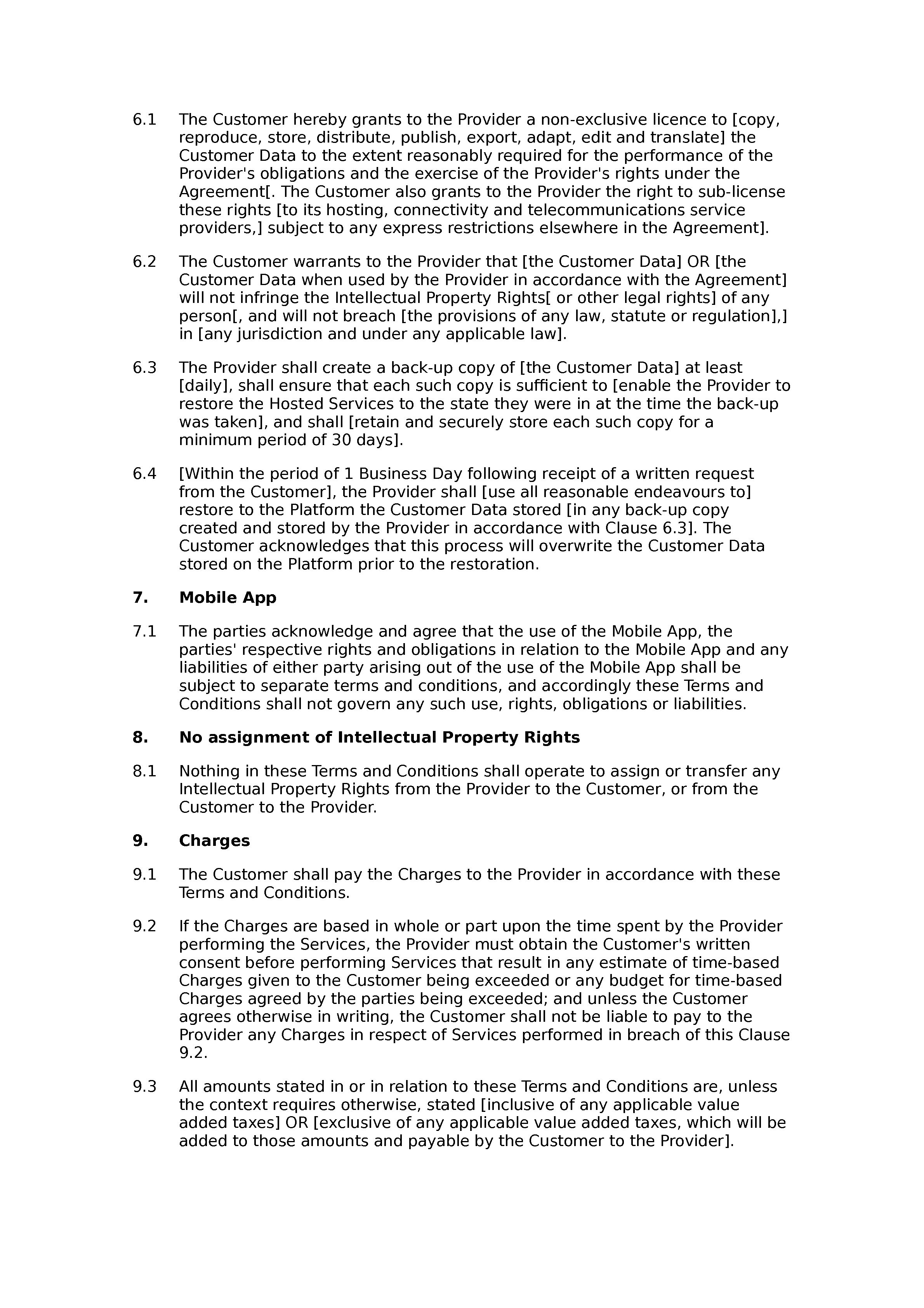 SaaS terms and conditions (basic) document preview
