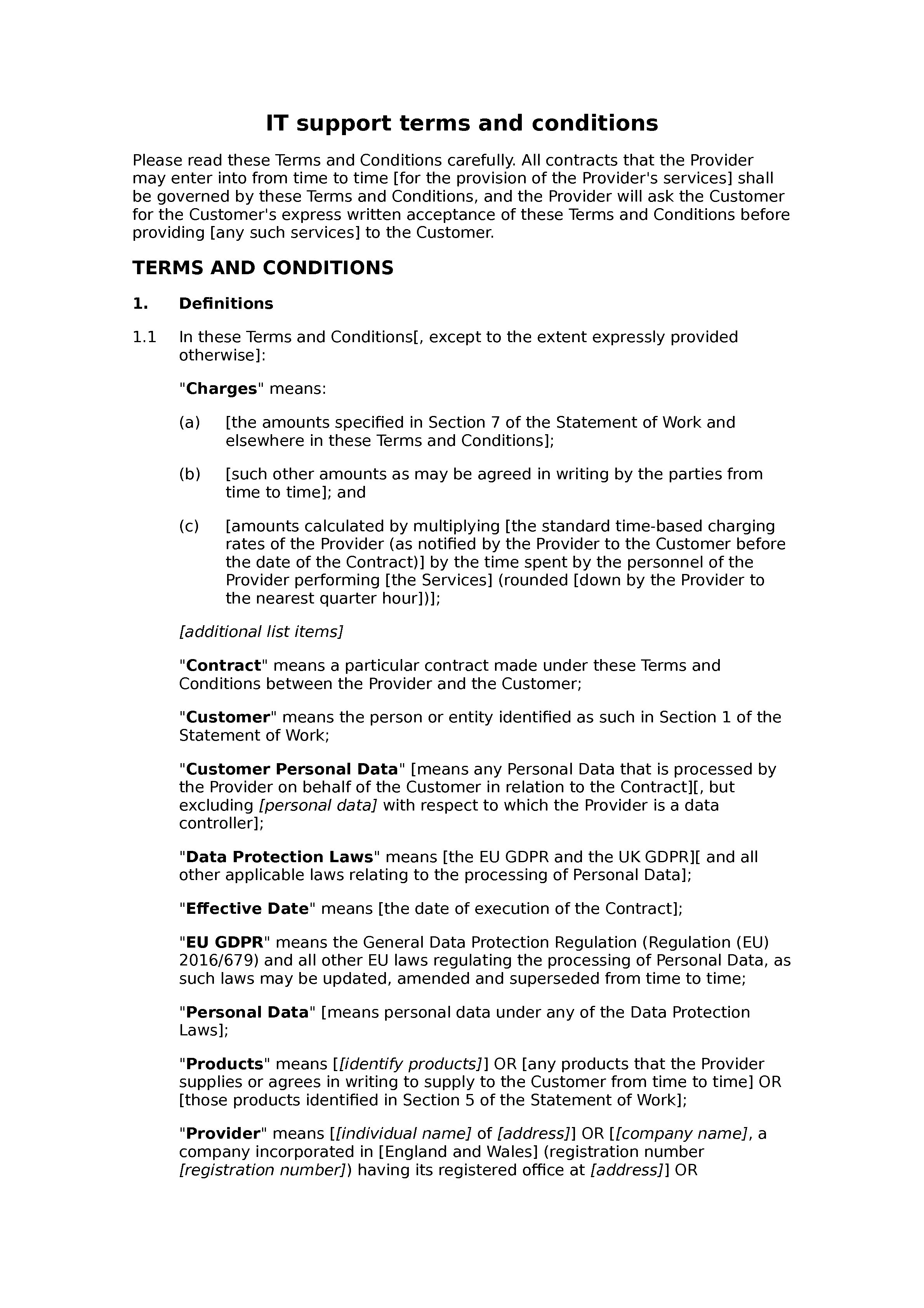 IT support terms and conditions (basic) document preview