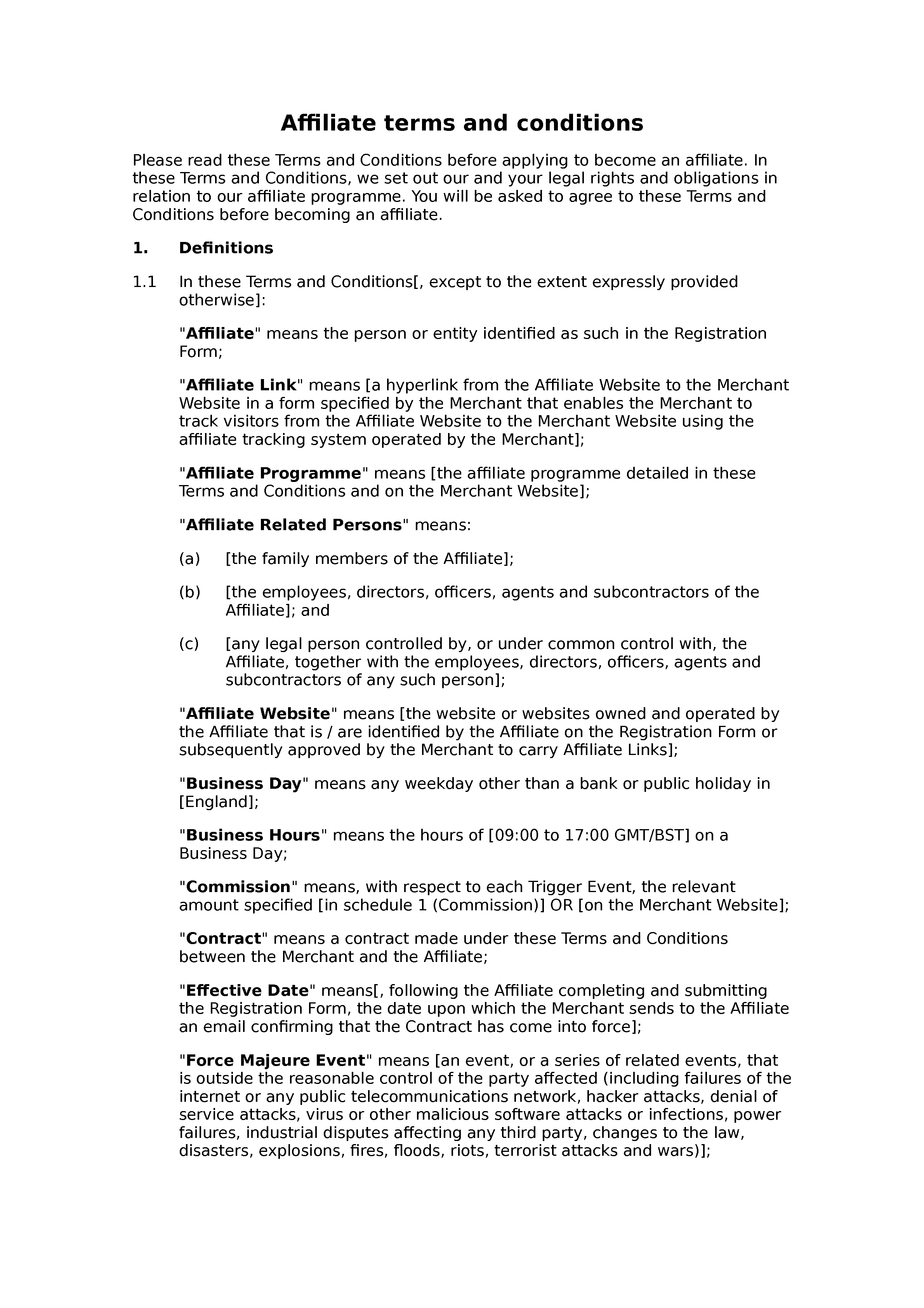Affiliate terms and conditions (premium) document preview