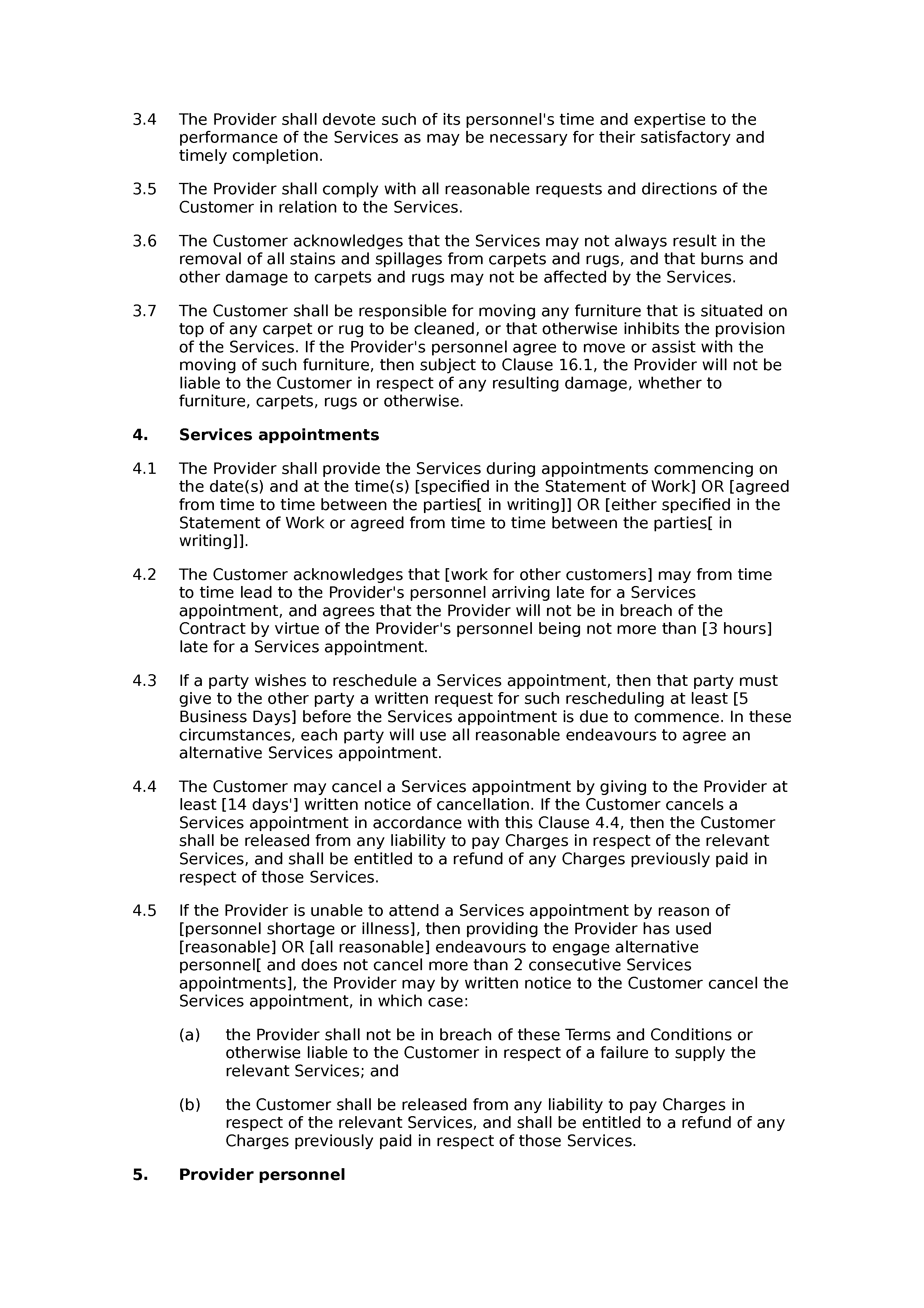 Carpet cleaning terms and conditions document preview